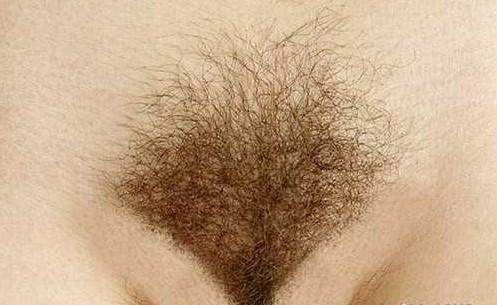 Женская интимная стрижка, примеры и фотографии.